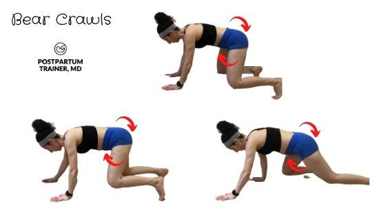 diastasis-recti-bear-crawls