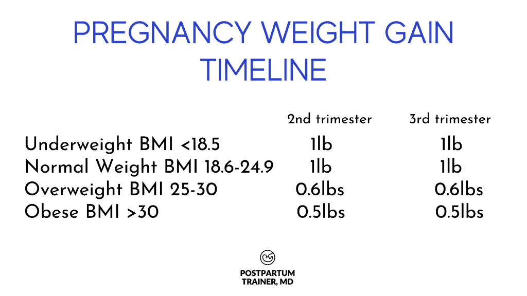 pregnancy-weight-gain-timeline