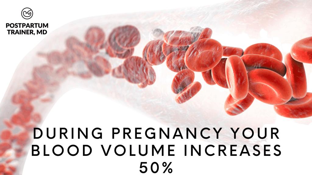 increased-blood-volume-in-pregnancy