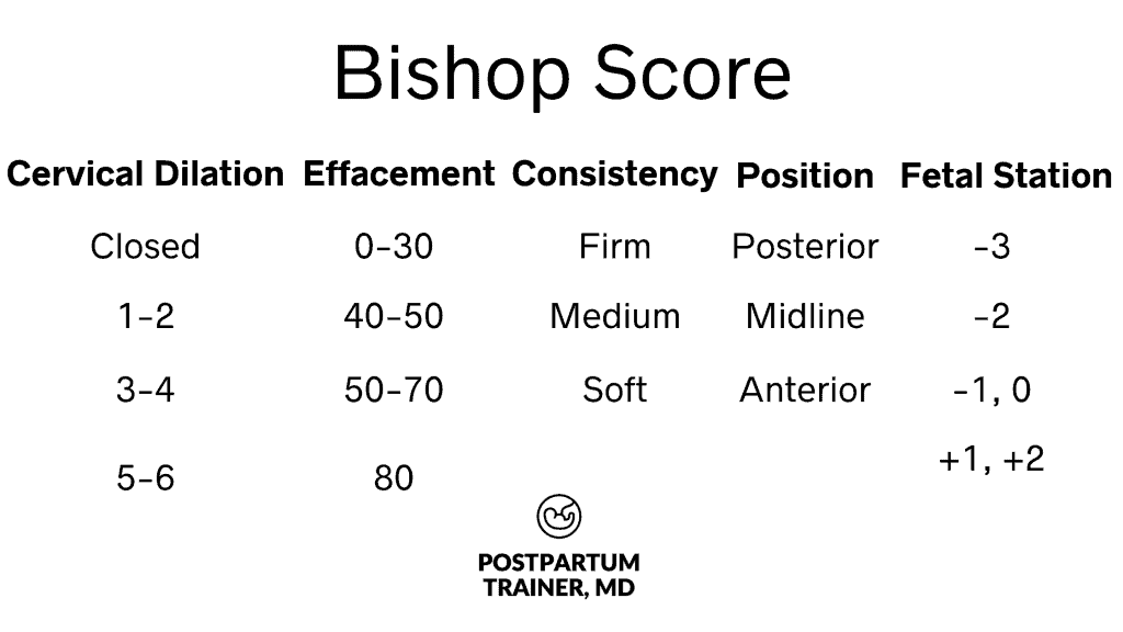 bishop-score