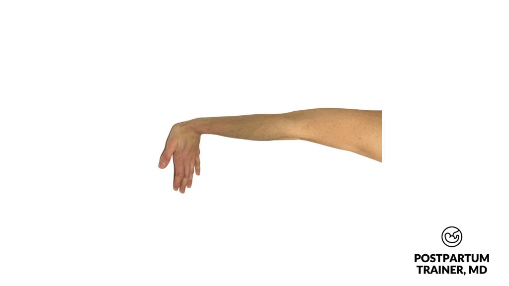 wrist-flexion